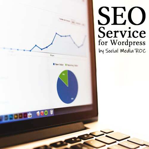 Improve your Google ranking with our SEO Service for WordPress